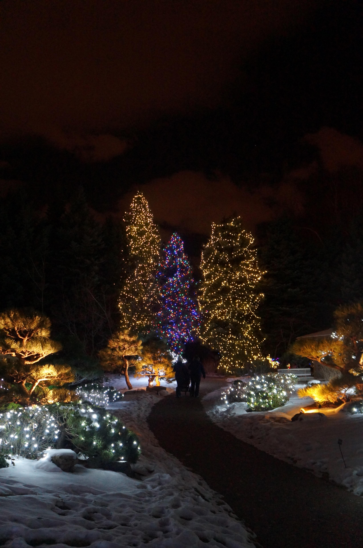 Denver Botanical Gardens Blossom Of Lights Exhibit Ali Damron