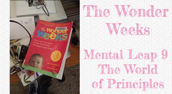 Wonderweeks1